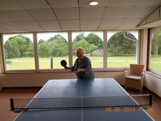 Warner Leisure Hotels Gunton Hall Coastal Village: Table Tennis Area