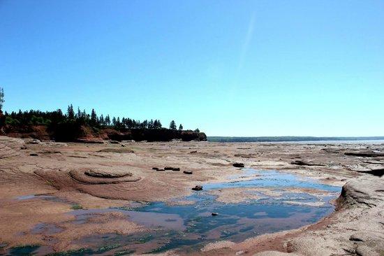 Burntcoat Head Park : More low tide.