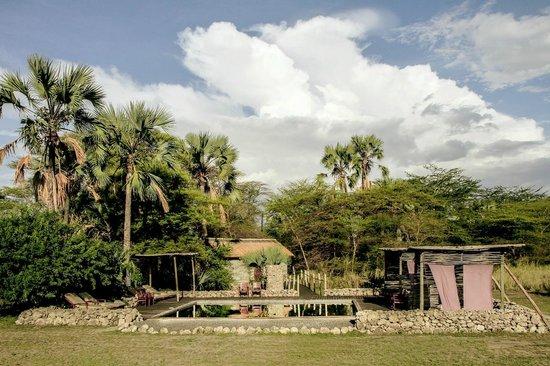 Chem Chem Safari Lodge : Chem Chem Lodge
