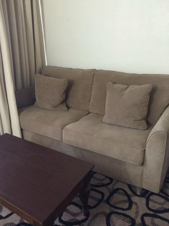 Boca Raton Plaza Hotel and Suites: Sofa bed couch
