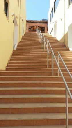 Asterias Village Resort: Лестница от ресепшна\бассейна\бара наверх, к таверне и минимаркету