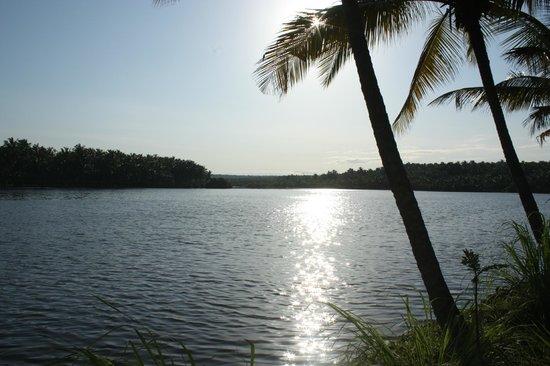 The Lalit Resort & Spa Bekal : Sunny morning by riverside.