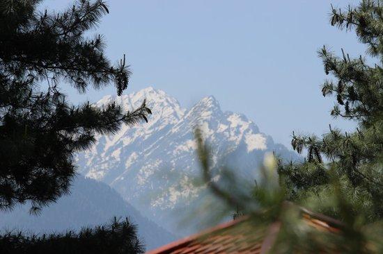 Hotel Senator Pine-n-Peak Pahalgam: from the rock