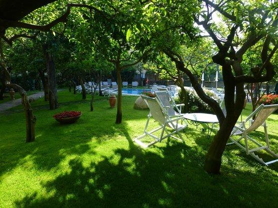 Antiche Mura Hotel : Pool & garden