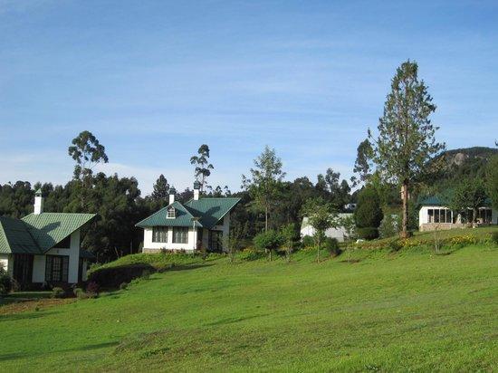 Camp Noel: landscape view