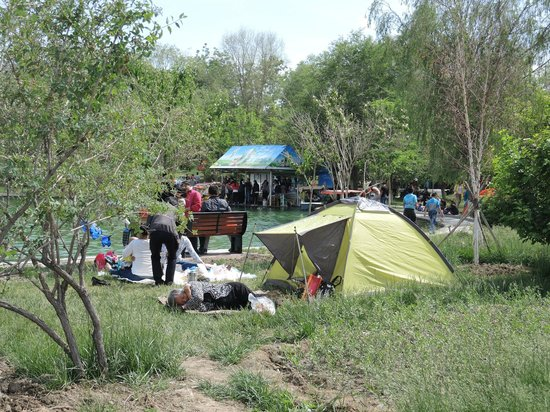 Urumqi Botanical Garden: Люди ставят палатки, кушают, спят.