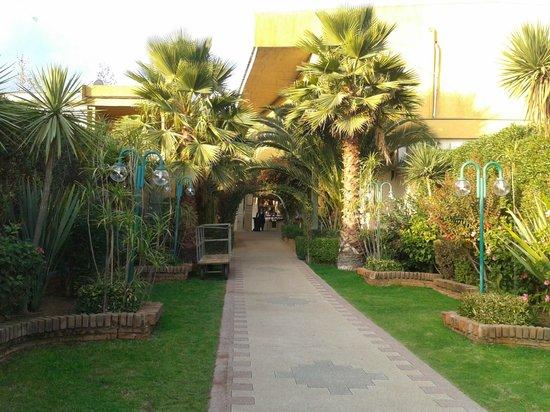 Rosa Agustina Club Resort & Spa : Vista desde sector de piscina