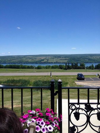 Starkey's Lookout: View from the deck