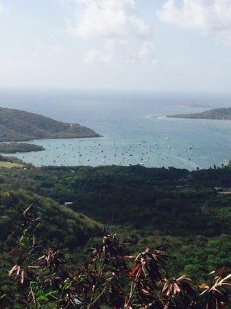 Coconut Coast Villas : Bay