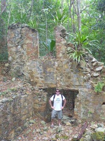 Coconut Coast Villas : Ruins