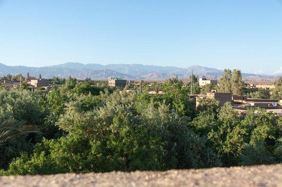 Kasbah Ait Ben Damiette: Vue de notre terrasse