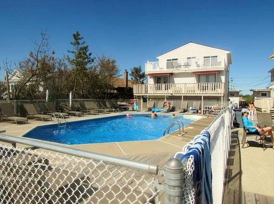 nice clean pool picture of driftwood motel point pleasant beach tripadvisor. Black Bedroom Furniture Sets. Home Design Ideas