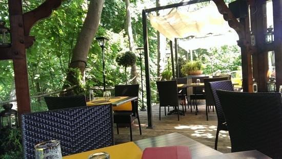Hotel Restaurant les Pins : la terrasse du restaurant