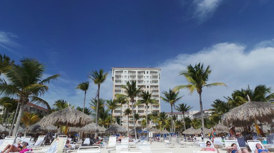 Marriott's Aruba Surf Club : Pano View from the beach in front!
