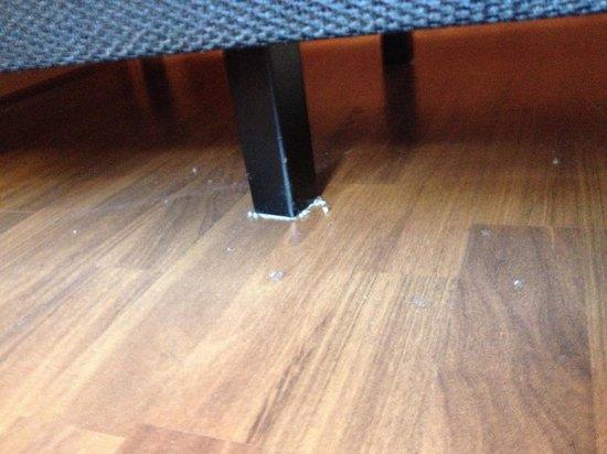 Ibis Paulista: Under the bed
