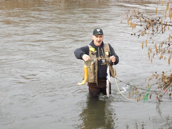 Allegheny River Campground: opening of trout