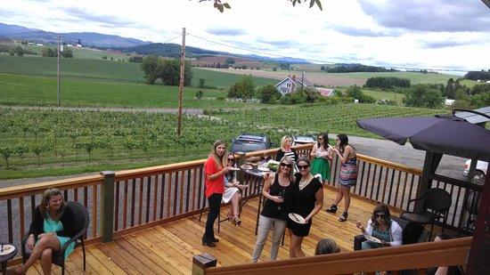 Kason Vineyards: Beautiful views from patio