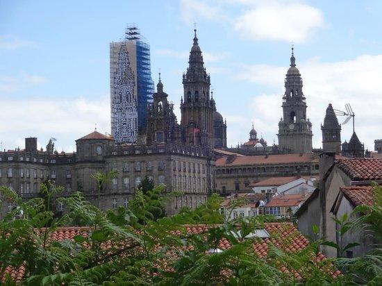 Mirador Parque da Alameda: Vista para a Catedral
