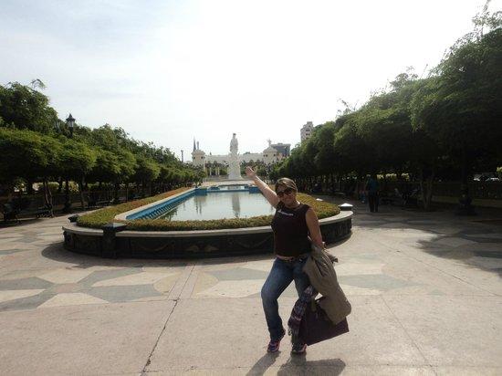 Plaza del Rosario de Nuestra Senora de Chiquinquira : la fuente