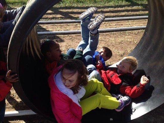 Jackson's Orchard : great fun for the kids