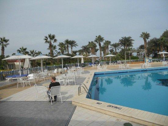 Festival Shedwan Golden Beach Resort: Территория