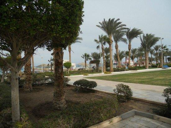 Festival Shedwan Golden Beach Resort : Территория
