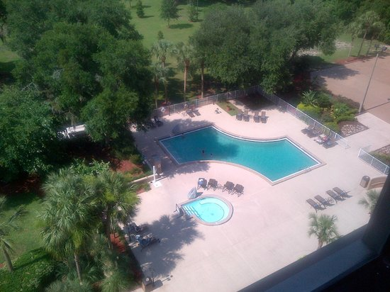 Hilton Ocala: View from the room