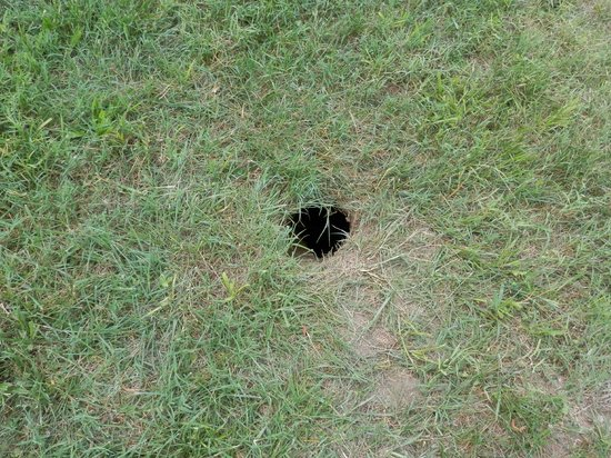 Bear Crossing Condominiums : large hole in the ground near the picnic table by the river