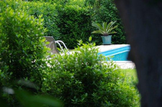 Manoir de Chaix : la piscine