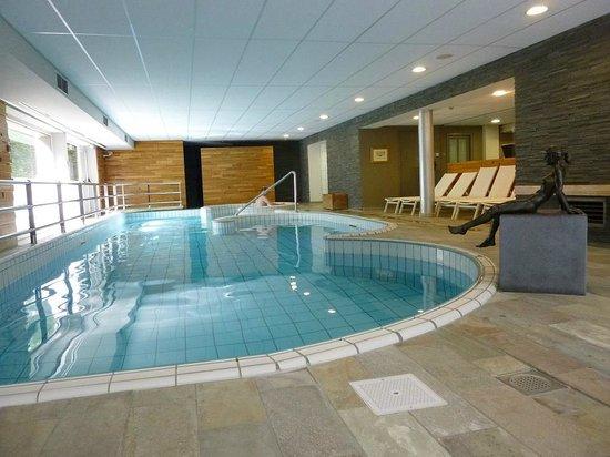 La Butte Aux Bois Hostellerie : piscine