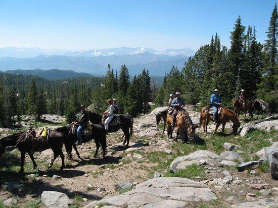 Beartooth Plateau Outfitters Montana Pack Trip
