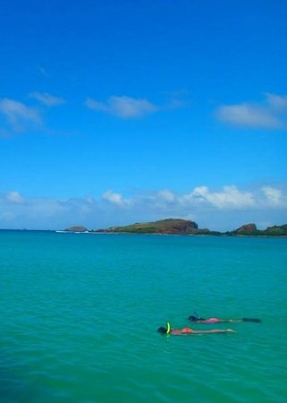 East Island Excursions : People snorkeling