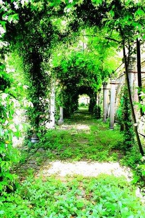 San Sebastiano Garden Hotel: Il Giardino - The Garden