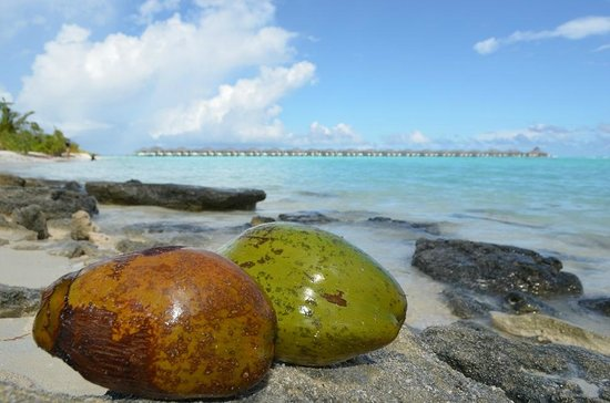 Sun Island Resort and Spa: 1