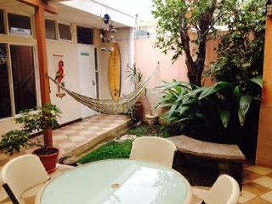 Gaudy's Backpacker Hostel: Hammocks to relax in