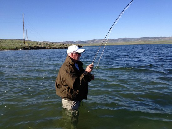 Wading hooked up picture of monster lake cody for Cody wyoming fly fishing