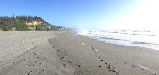 Gold Bluffs Beach Campground: On the beach by the campsite