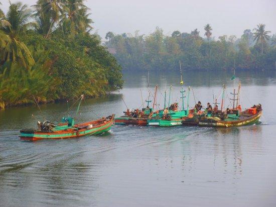 Champa Lodge: Boats returning at 07.30