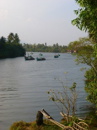Champa Lodge: Boats off fishing at 16.30