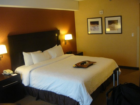 Hampton Inn & Suites Boston Crosstown Center : King size room