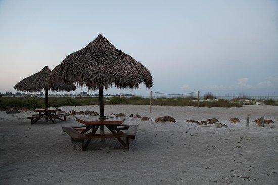 Sarasota Sands: Beach Area