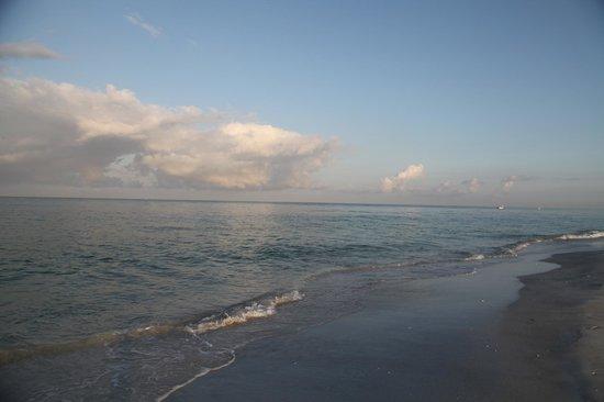 Sarasota Sands: Beautiful Beach