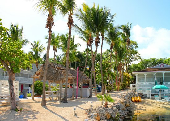 Amoray Dive Resort: Old school tropical grounds