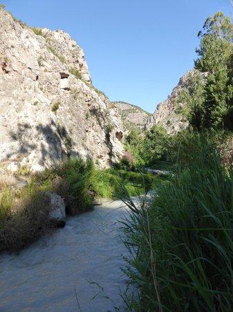 La Finca del Castillo Arabe: Walk to stream