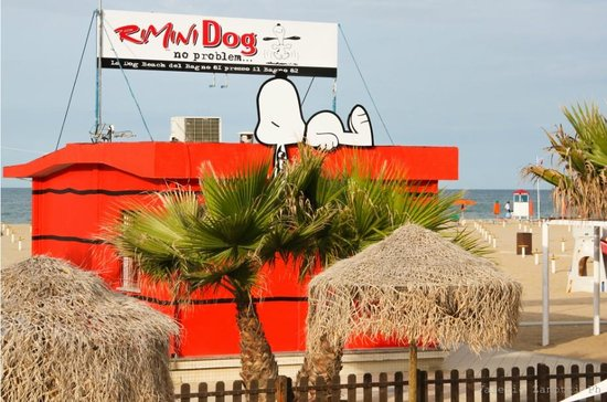 ‪Rimini Dog No Problem‬