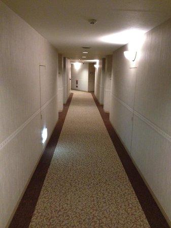 Rembrandt Hotel Oita : 通路