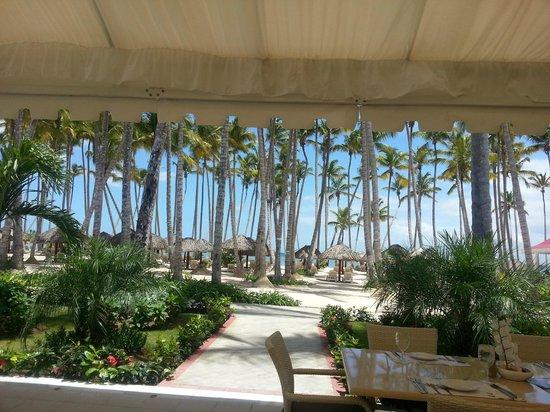 Luxury Bahia Principe Bouganville Don Pablo Collection: Los Corales view
