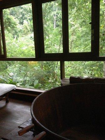 Pousada Bromelias: Ofurô á beira da cachoeira! Barulho de água, pássaros, aromaterapia e vinho! Divino!