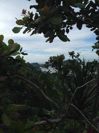 Hotel Costa Verde: View