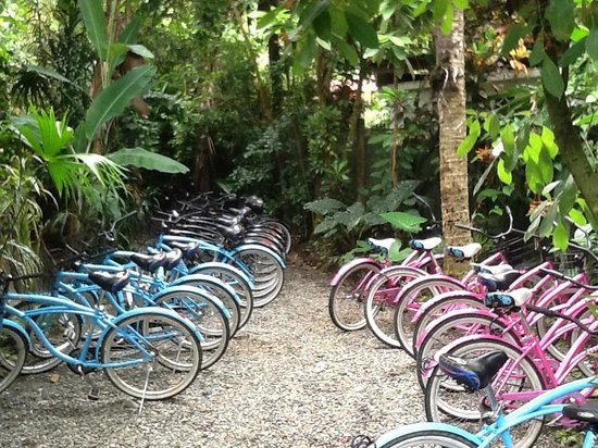 La Ruka Hostel: bikes